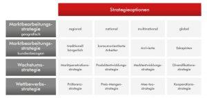 Schaubild der Strategieoptionen | Werbeagentur MARTES NEW MEDIA